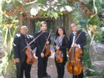 DC String Quartet